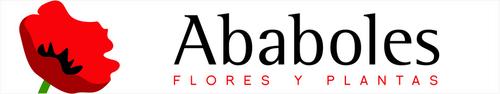 Ababoles Flores y Plantas - Floristería en Sanchinarro Madrid